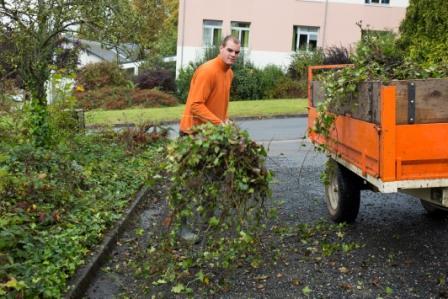 Capa jardinier paysagiste formation en travaux paysagers for Entreprise jardinier paysagiste