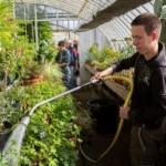 formation en horticulture_apprentis d'auteuil
